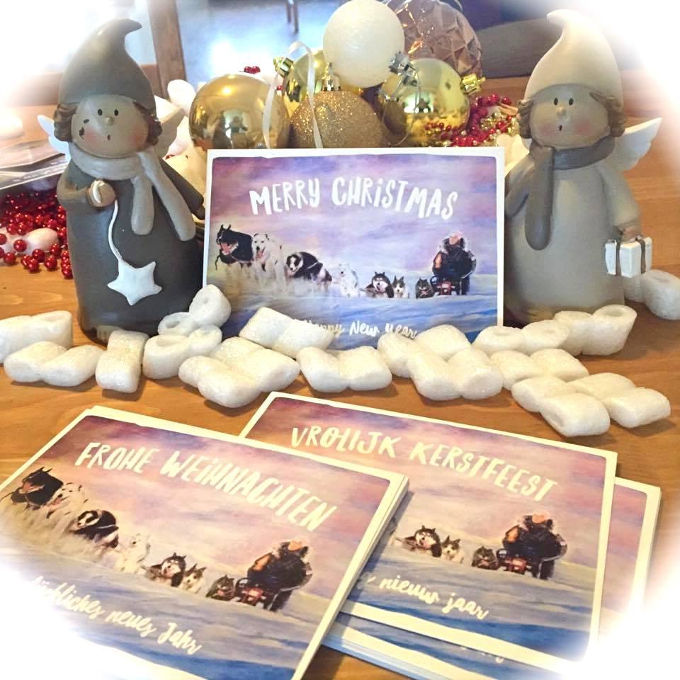 Husky Christmas Cards.Unique Christmas Cards Form Sled Dog Rescue